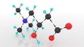 L肉毒碱,肉毒碱, Levocarnitine 3d 图库摄影