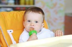 L'âge de bébé de 11 mois mange des fruits à l'aide du grignoteur Photos stock