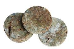 L'échantillon de roche dans un noyau de forage photographie stock libre de droits