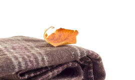 L'écharpe et l'automne de Brown poussent des feuilles sur un fond blanc Photo libre de droits