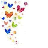 L'éclaboussure colorée des papillons, des fleurs et de la peinture éclabousse. Photos stock
