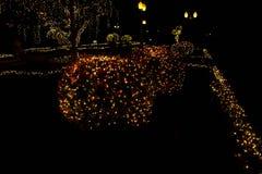 l'éclairage sur des arbres Images stock
