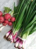 L'?clat incroyable de la verdure vous incite ? vouloir le mordre images stock