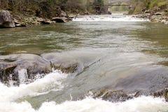 L'écoulement et l'ébullition forts de l'eau en rivière de montagne avec éclabousse image libre de droits