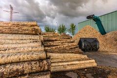 L'écrasement de la machine du bois et des rondins aux déchets de processus et transforment en granules photographie stock libre de droits