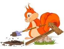 L'écureuil place un signe Photos libres de droits
