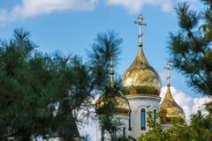 L'église se tient fièrement parmi les sapins Photographie stock