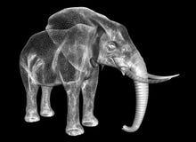 L'éléphant Photographie stock