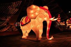 L'éléphant coloré dans la nuit Photo libre de droits