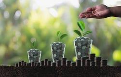 L'élevage de l'épargne invente le developm croissant d'affaires de graphique d'investissement Image stock