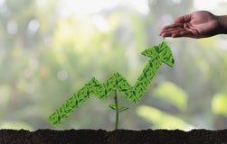 L'élevage de l'épargne invente le developm croissant d'affaires de graphique d'investissement Images libres de droits