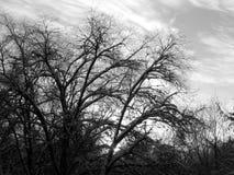 L'émergence du soleil des nuages dans le ciel Images libres de droits