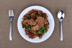 L'émoi a fait frire la nouille et le porc plats avec la sauce de soja foncée Photos stock