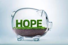 L'épargne de croissance d'herbe et concept d'espoir d'investissement Images stock