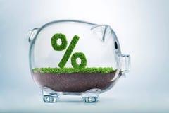 L'épargne de croissance d'herbe et concept de pourcentage d'investissement Photographie stock