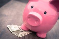 l'épargne de /money de Porcin-banque/concept de la croissance Photo libre de droits