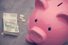 l'épargne de /money de Porcin-banque/concept de la croissance Images stock