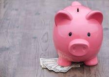 l'épargne de /money de Porcin-banque/concept de la croissance Image stock