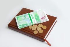 L'épargne financière se trouve sur le carnet avec l'euro et le penny Photographie stock libre de droits