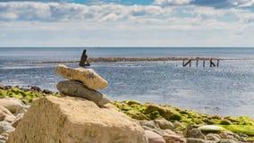 L'épave de l'effrontée, baie d'Osmington, côte jurassique, Dorset, R-U images libres de droits