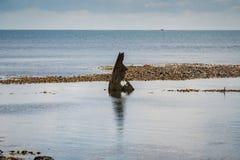 L'épave de l'effrontée, baie d'Osmington, côte jurassique, Dorset, R-U image stock