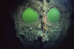 L'épave de l'impératrice de revêtement d'océan de l'Irlande dans le St Lawrence River images libres de droits