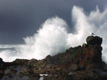 L'éperlan sable la vague déferlante Photographie stock