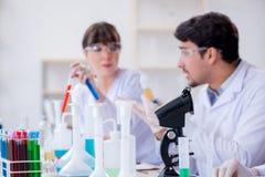 L'équipe de chimistes travaillant dans le laboratoire photo stock