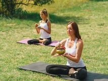 L'équipe de forme physique s'exercent en parc Concept de yoga image stock