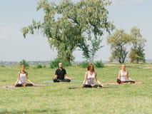 L'équipe de forme physique s'exercent en parc Concept de yoga photo libre de droits