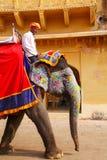 L'équitation de Mahout a décoré l'éléphant à l'intérieur de courty principal de Jaleb Chowk Photos libres de droits