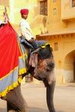 L'équitation de Mahout a décoré l'éléphant à l'intérieur de courty principal de Jaleb Chowk Images libres de droits