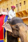 L'équitation de Mahout a décoré l'éléphant à l'intérieur de courty principal de Jaleb Chowk Photos stock