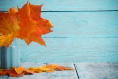 L'érable d'automne laisse le groupe dans le vase sur le fond en bois Photographie stock libre de droits