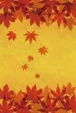 L'érable d'automne part de l'illustration de fond illustration de vecteur