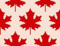 L'érable part sur le blanc - modèle de tricotage sans couture Image libre de droits