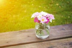 L'été rose coloré fleurit dans un vase en verre photos libres de droits
