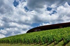 L'établissement vinicole du chianti Classico de nel d'Antinori image stock