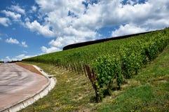 L'établissement vinicole du chianti Classico de nel d'Antinori photo stock