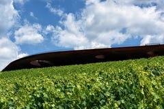 L'établissement vinicole du chianti Classico de nel d'Antinori photographie stock libre de droits