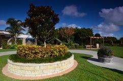 L'établissement vinicole Soljans de domaine d'établissements vinicoles de secteur Paysage auckland Images stock