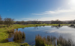 L'étang de rosée, bas du sud Photos libres de droits