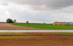 L'étang de village par jour nuageux II Images stock