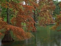L'étang en automne Images libres de droits