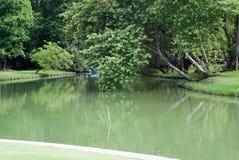 L'étang est entouré par des parcs Les grands arbres étant entouré Photos libres de droits