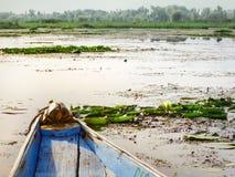 L'étendue du lac dal à Srinagar photos stock