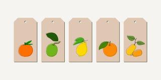 L'étiquette de vecteur a placé avec les agrumes tirés par la main de vintage en couleurs illustration stock