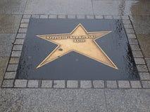 L'étoile de la rue de Piotrkowska photos stock