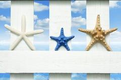 L'étoile de mer en mer sur la plage sur le vintage embarque Photos libres de droits