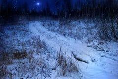 L'étoile de Noël photographie stock libre de droits
